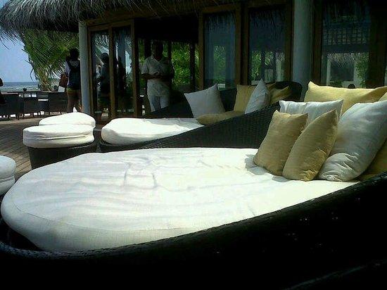 Vakarufalhi Island Resort:                   comodissimi divani tondi , che dormite !!