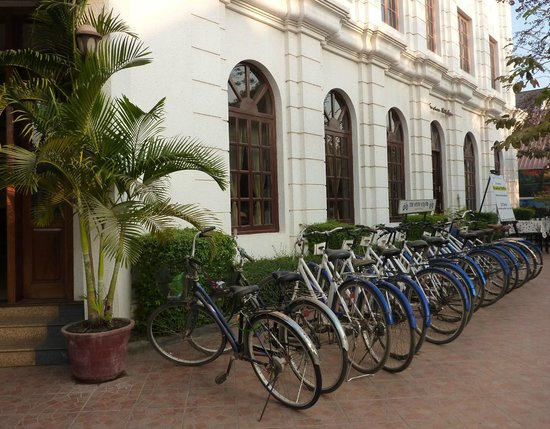Soria Moria Boutique Hotel:                   White Bicycle line up