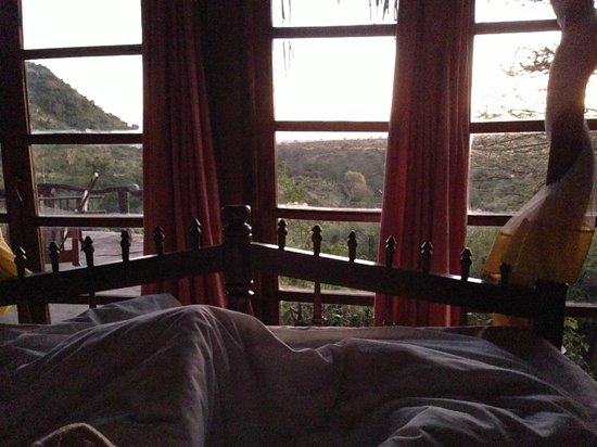 Lewa Wilderness:                   View from the bed!