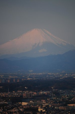 Yokohama Royal Park Hotel: View of Mt Fuji from the hotel room