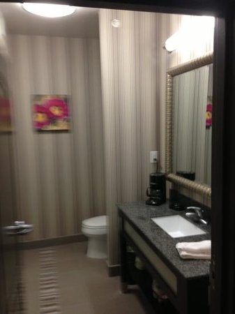 Hampton Inn Leesville/Ft. Polk :                                                       bathroom with shower