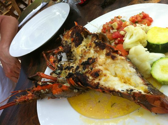 Tamarindo Village Hotel :                                     langouste