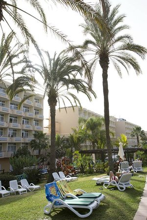 IFA Catarina Hotel:                   A view from the grounds