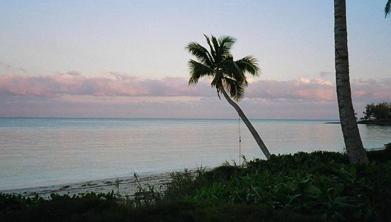 Bahama Coconut Farm:                   Sunset