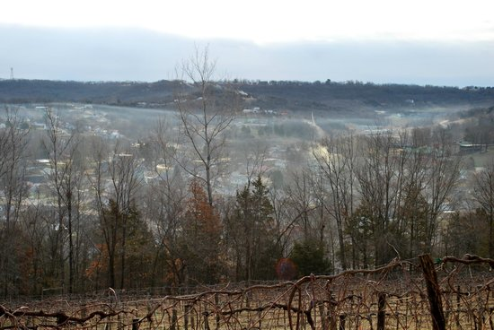 Hermann Hill Vineyard Inn & Spa and River Bluff Cottages :                   Love the mist in the valley