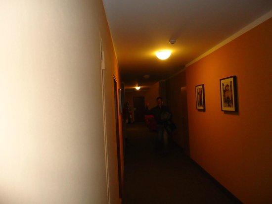 Kampa Garden: Hallway