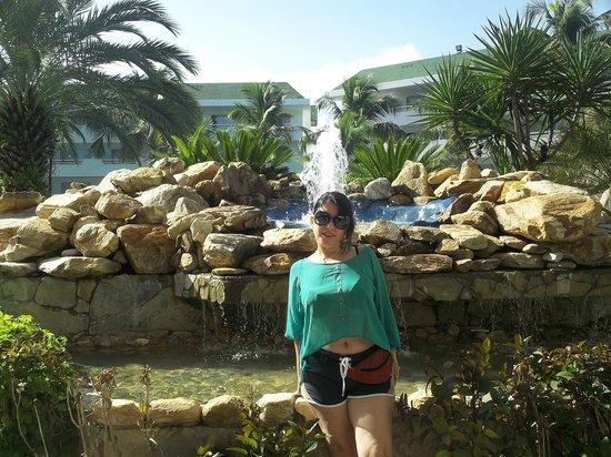 SUNSOL Isla Caribe:                   Sector Real