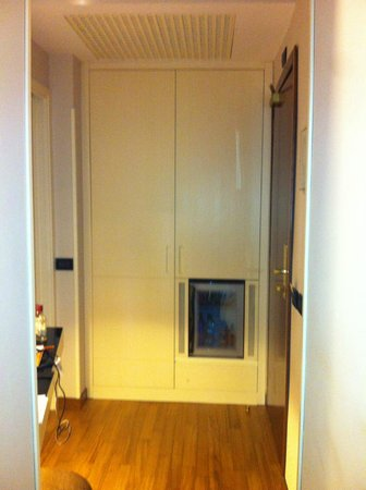 Hotel Oxford:                   wardrobe and fridge