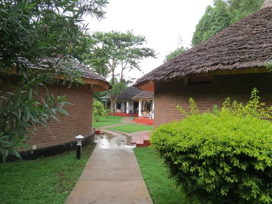 Ilboru Safari Lodge:                   Path to rooms