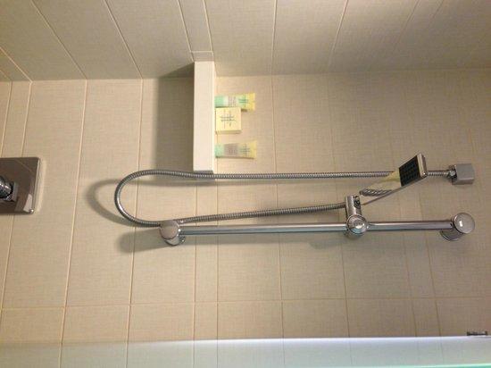 Grand Hyatt New York: Rainfall shower in some rooms