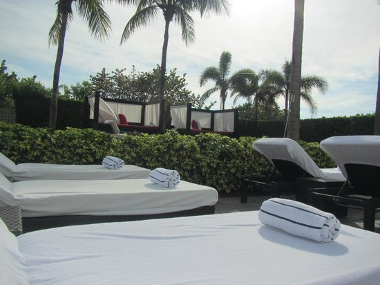 Hilton Bentley Miami/South Beach: Chairs and bungalows