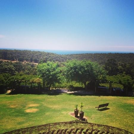 Wise Vineyard Restaurant:                   views from the restaurant