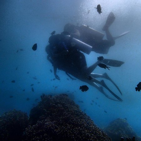 scuba diving with Boracay Island Divers