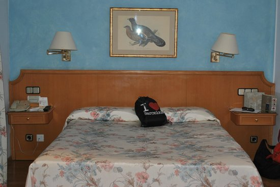 Regencia Colon Hotel: Deluxe Double Bed