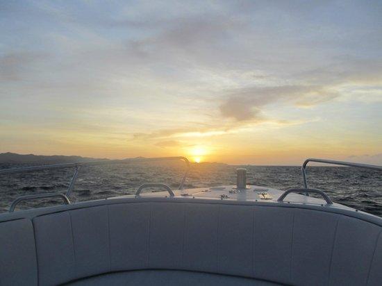 Simba Sea Trips:                   .