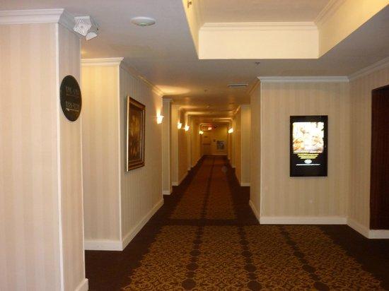 威尼托娛樂場酒店照片