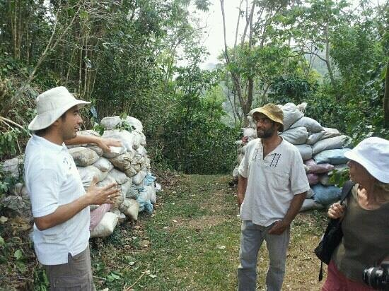El Toledo Coffee Tour :                   Gabriel explaining true organic coffee farming.