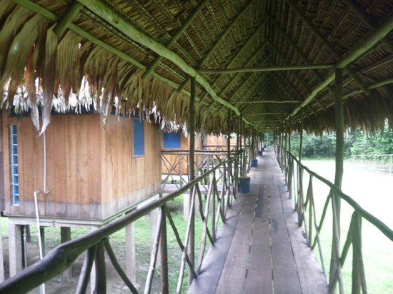 Muyuna Amazon Lodge:                   Walkways