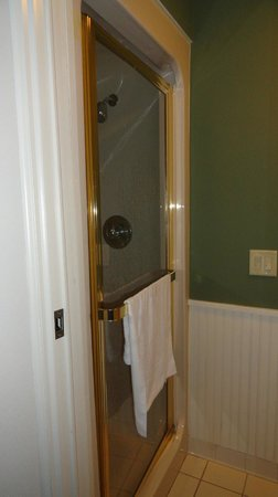 Sleep Inn & Suites of Lake George :                   clean relatively new shower stall