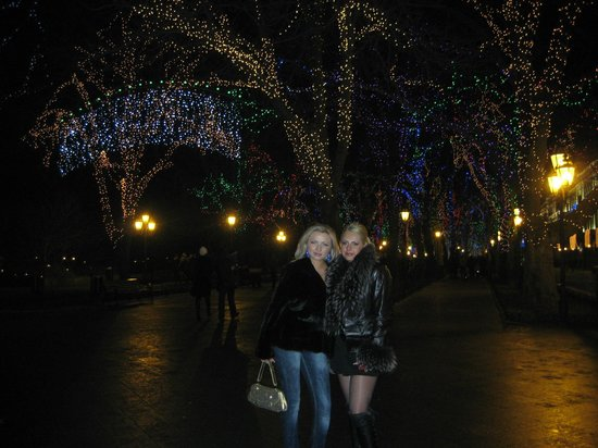 Primorsky Boulevard:                   The lighting in the trees at night is magic.