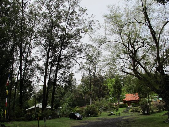 Wood Valley Temple Retreat & Guest House:                   Overview of Wood Valley Temple