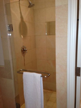 The Ritz-Carlton, Dallas:                   shower