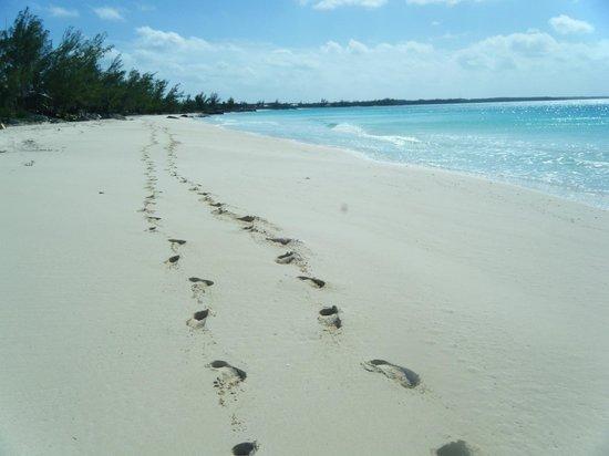 بيجيون كاي بيتش كلوب:                   Footprints photo again                 