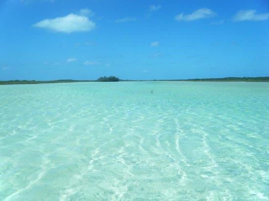 鴿子礁沙灘俱樂部照片