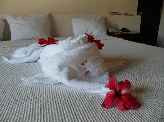 أليجرو كوزوميل ريزورت:                   One of the daily towel critters                 