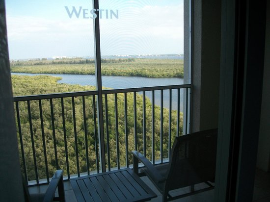 The Westin Cape Coral Resort At Marina Village: View from our screened balcony