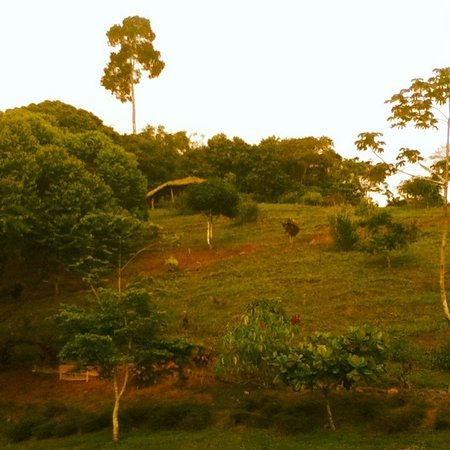 Farm of Life