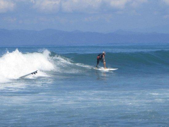 Cabinas Carol: Surf