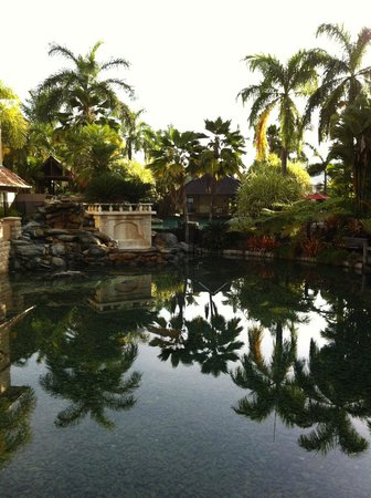 The Lakes Cairns Resort: Lagoon near pool - grounds well maintained, beautiful