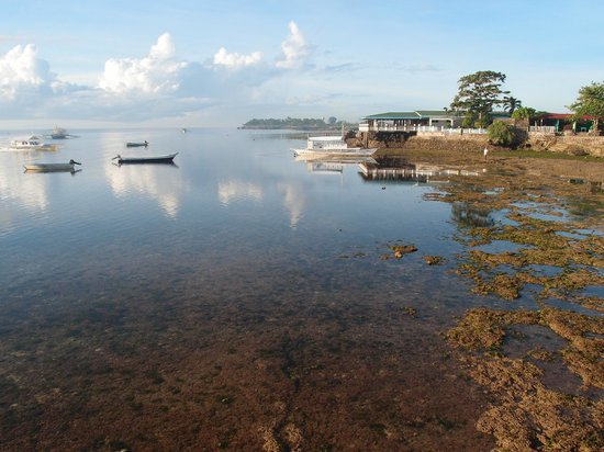 BlueFins Resort:                                                       beach beside hotel (low tide)