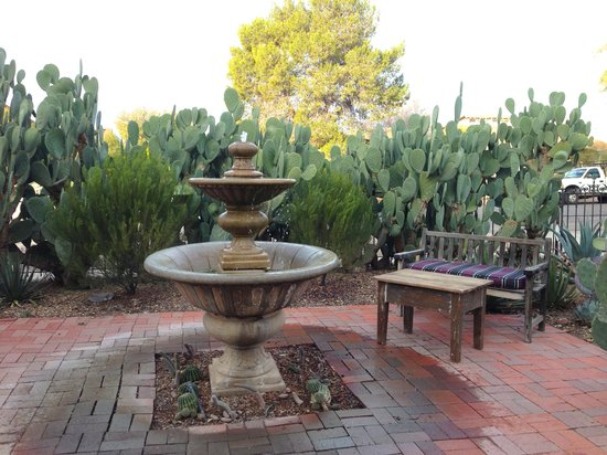 Catalina Park Inn Bed and Breakfast: Garden