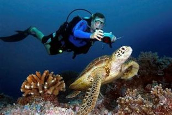 Monaco Suites de Boracay: diving