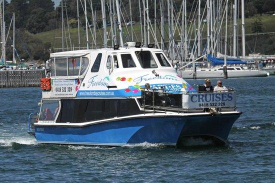 Freedom Bay Cruises- Day Boat Tours