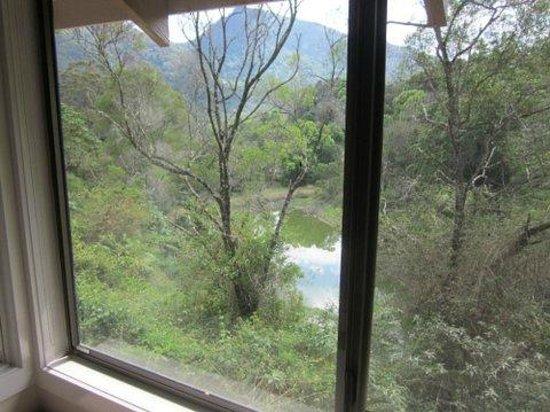 Eden Health Retreat :                   View from my Hillside room