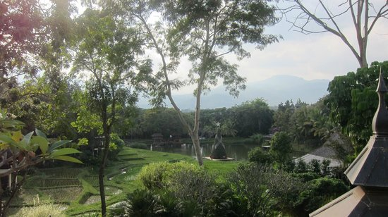 Four Seasons Resort Chiang Mai:                   View from the breakfast area