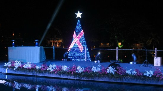 Four Seasons Resort Chiang Mai:                   The Christmas tree with the Breast Cancer lightings