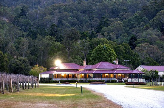 O'Reilly's Canungra Valley Vineyard Vintage Restaurant: CVV Homestead
