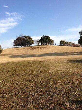 Chiba Port Park:                   のんびりしてます