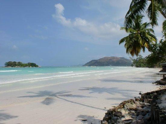 Paradise Sun:                   Strand vor der Haustüre