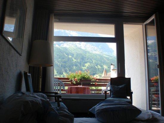 Hotel Bernerhof: VISTA DESDE LA CAMA