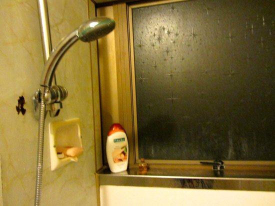 Motel 384:                   Dirty window in bathroom/shower with no blind