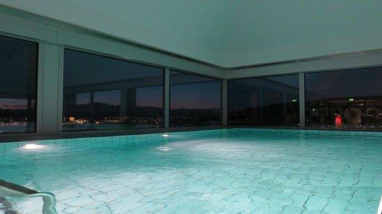 โรงแรม สวิสโซเทล ซูริช:                   pool
