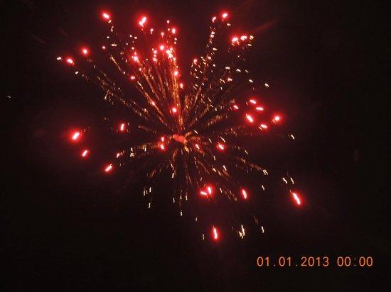 Umaid Mahal:                   Welcome 2013