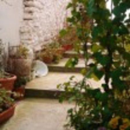 Hotel La Seguiriya: Jardin