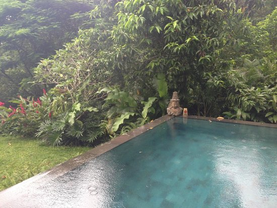 The Damai:                   private pool