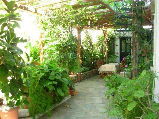 Anastasia Studios :                   κηπος, και χωρος που μπορεις να φας, να πιεις καφε